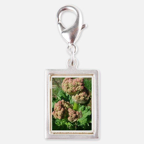 Ruby Rhubarb Silver Portrait Charm