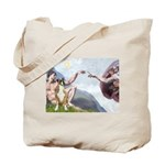 Creation of the Boxer Tote Bag