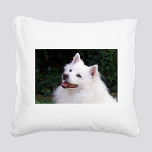 american eskimo Square Canvas Pillow