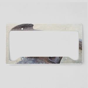 Anchor License Plate Holder
