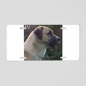 anatoilian shepherd Aluminum License Plate