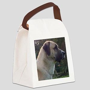 anatoilian shepherd Canvas Lunch Bag