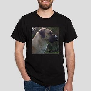 anatoilian shepherd T-Shirt