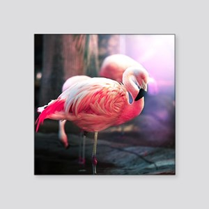 "Beautiful Flamingo Square Sticker 3"" x 3"""