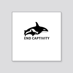 Save the Orcas - captivity kills Sticker