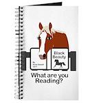 Red Pony Journal