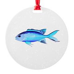 Blue Chromis Ornament