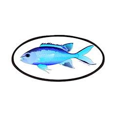 Blue Chromis Patches