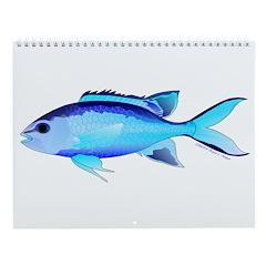 Blue Chromis Wall Calendar
