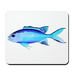 Blue Chromis Mousepad