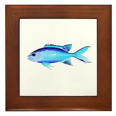 Blue Chromis Framed Tile
