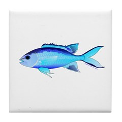 Blue Chromis Tile Coaster