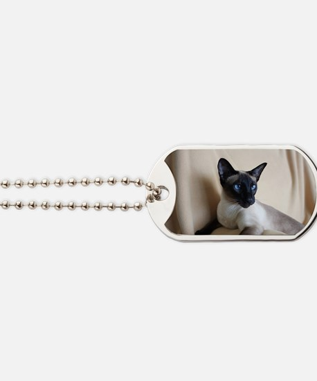 Seal Point Siamese Cat Blue Eyes Dog Tags