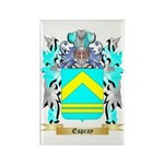 Espray Rectangle Magnet (10 pack)