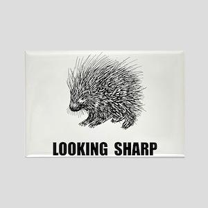 Sharp Porcupine Magnets