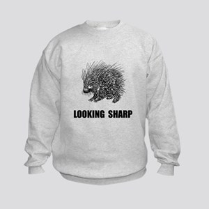 Sharp Porcupine Sweatshirt