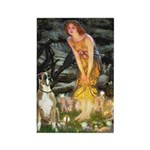 Fairies & Boxer Rectangle Magnet (10 pack)