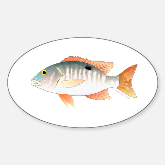 Mutton Snapper Decal