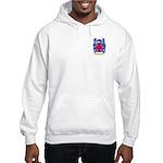 Espinha Hooded Sweatshirt