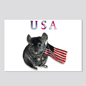 Chin USA Postcards (Package of 8)