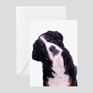 Berner Love Greeting Cards (Pk of 10)