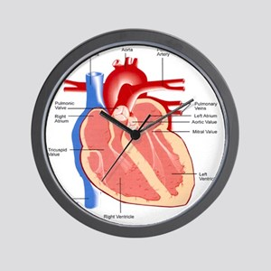 dr heart_diagram lr Wall Clock