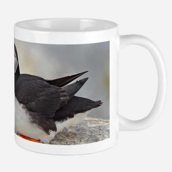 14x6_print 5 Mug