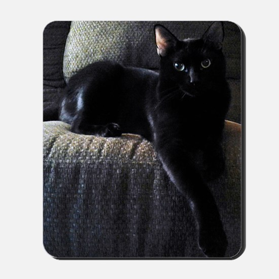 Beautiful Benny Mousepad
