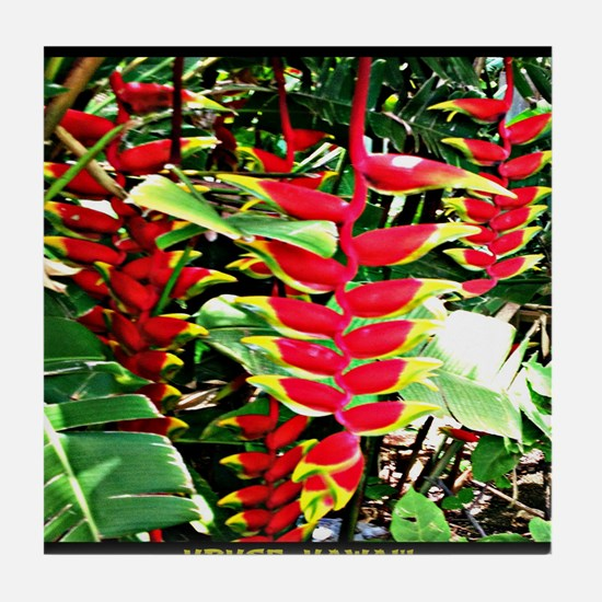 Hawaiian Torch Heliconia lower Tile Coaster