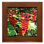 Hawaiian Torch Heliconia lower Framed Tile