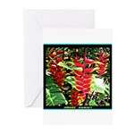 Hawaiian Torch Heliconia lower Greeting Cards (Pk