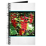 Hawaiian Torch Heliconia lower Journal