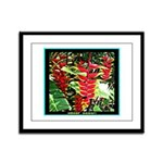 Hawaiian Torch Heliconia lower Framed Panel Print