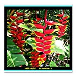 Hawaiian Torch Heliconia lower Square Car Magnet 3