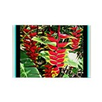 Hawaiian Torch Heliconia lower Rectangle Magnet (1