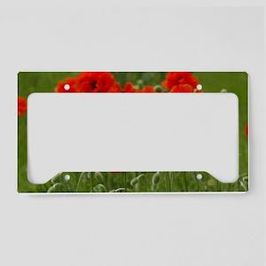 Poppies License Plate Holder