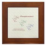 Phosphonosect Molecule Framed Tile