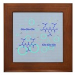 Glu-Glu-Glu molecule Framed Tile