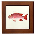 Red Snapper Framed Tile