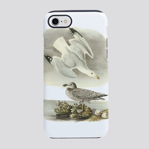 Herring Gull iPhone 7 Tough Case
