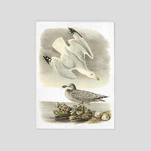 Herring Gull 5'x7'area Rug