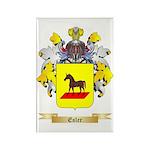 Esler Rectangle Magnet (100 pack)