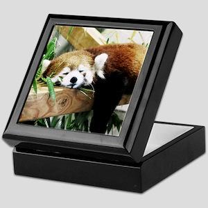 xia 7 Keepsake Box