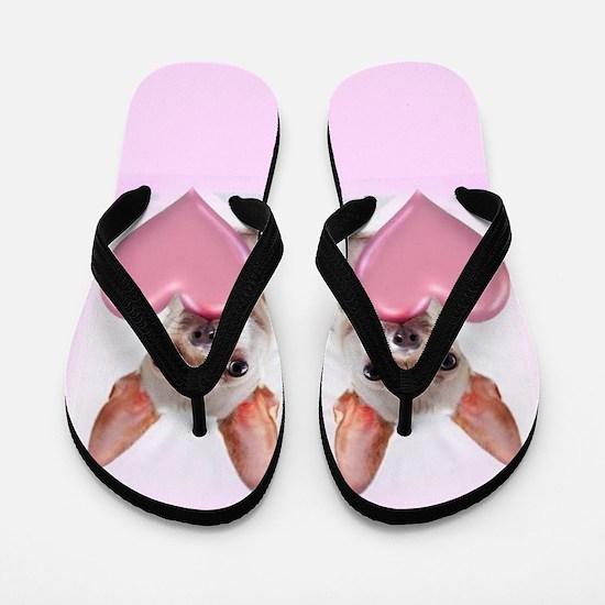 Pink Chihuahua dog Flip Flops