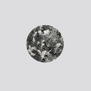 Black White Gray Abstract Pine Trees Tree Plant Na