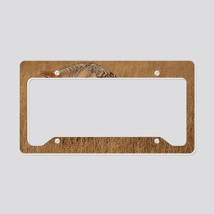 Coyote Flying License Plate Holder