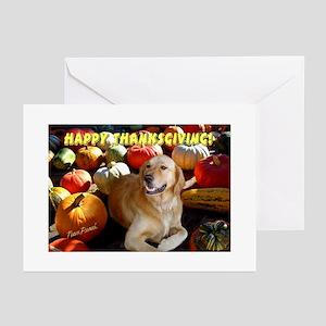 Thanksgiving dog greeting cards cafepress golden retriever thanksgiving greeting cards pack m4hsunfo Choice Image