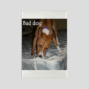 bad dog 2 Magnets