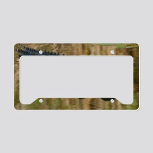 Alligator Swimming License Plate Holder