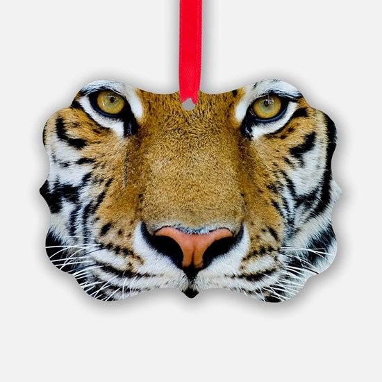 Big Cat Tiger Roar Ornament
